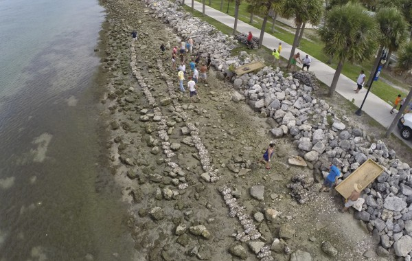 St. Lucie Oyster Reef Restoration